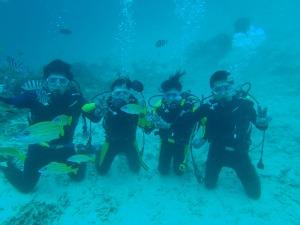 青の洞窟体験ダイビングですよ^^
