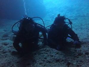 ジンベイと青の洞窟セット
