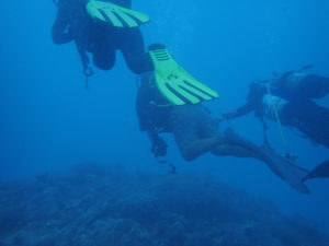 ダイブ可能な水深は18m