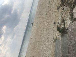 伊芸海浜公園🌊